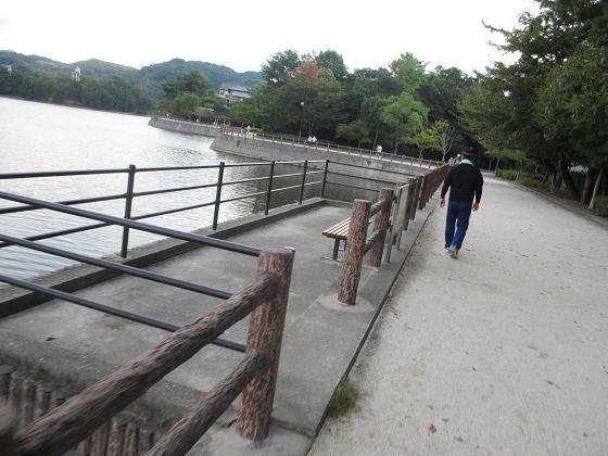 白水公園4