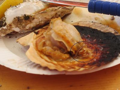 牡蠣in牡蠣