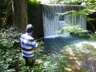 高倉谷川で釣り