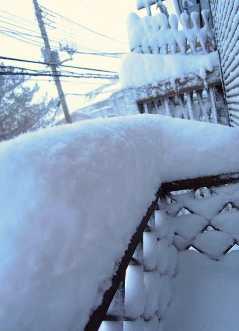 20140208大雪