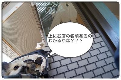 1EP7ernp9QFScbv_1350197826.jpg