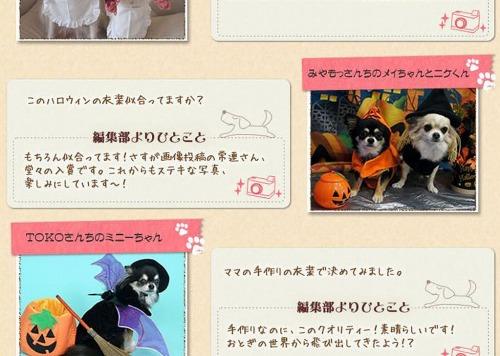 H24.11.20アイリスハロウィンコンテスト入賞