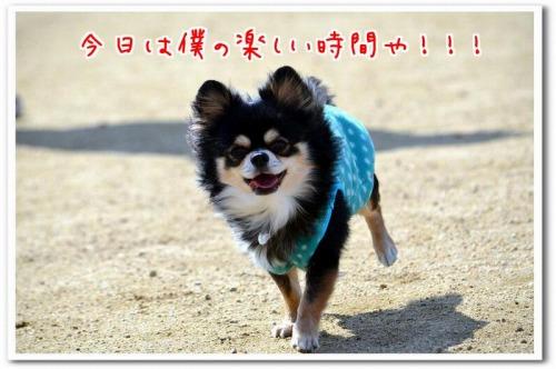 DSC_1321.jpg