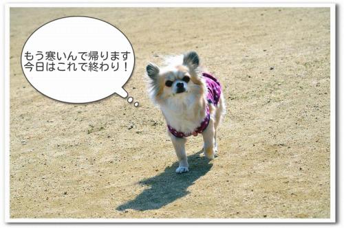 DSC_1328.jpg