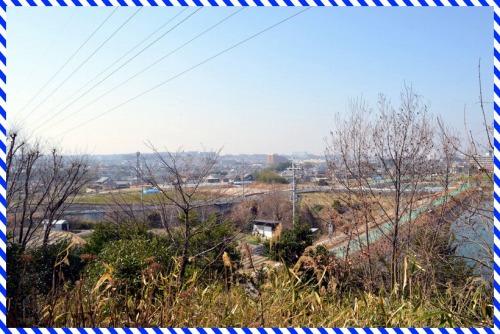 DSC_1441.jpg