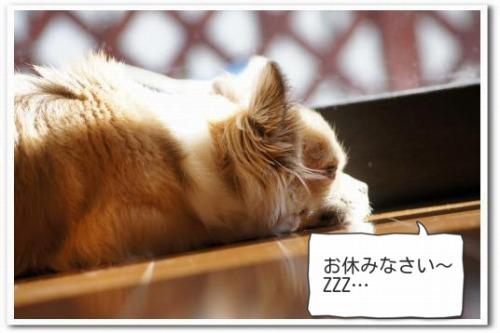 hizashi5.jpg