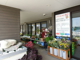 きんぽう 木花館
