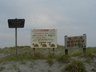 日南海岸国定公園