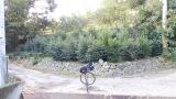 20140201石垣山142