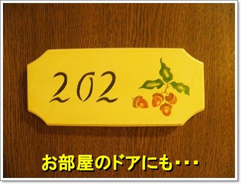 P8250153.jpg