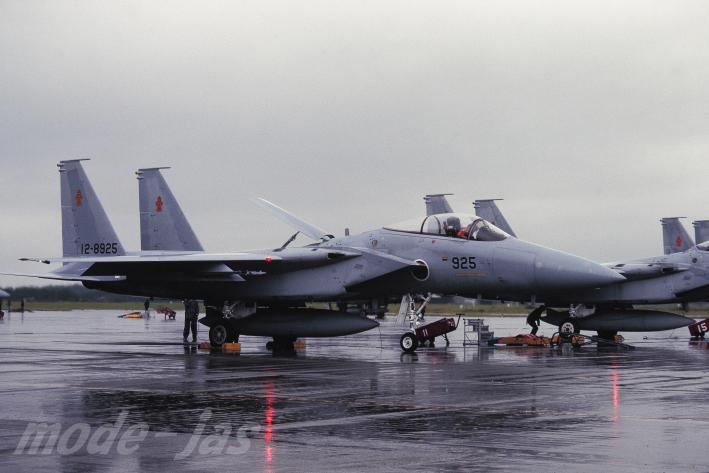 202Sq F-15J.