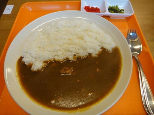 カレー(大辛)
