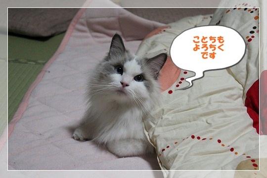 s-0101IMG_9194.jpg