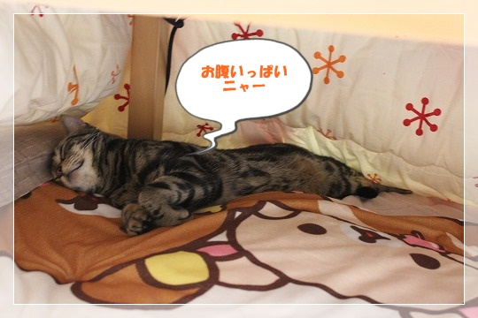 s-0101IMG_9195.jpg