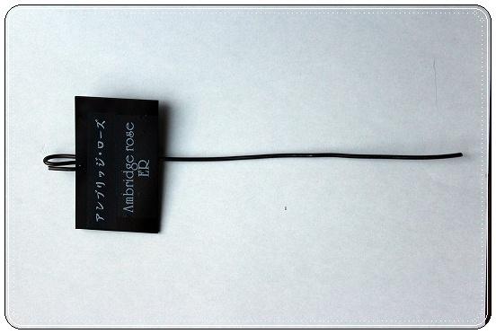s-0816IMG_1016.jpg