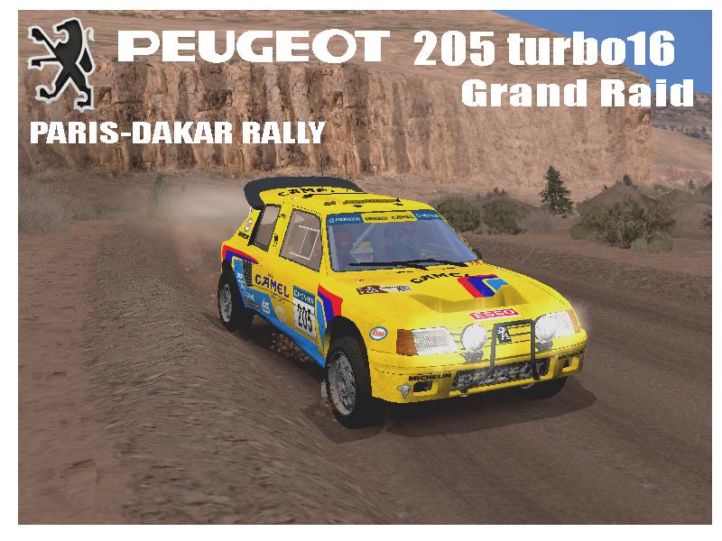 PEUGEOT_205_Turbo16_Grand_Raid.jpg