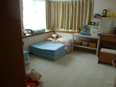 紋兄の寝床