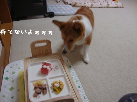 杏の誕生日