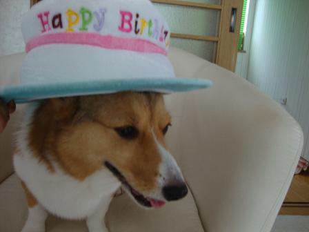 誕生日ハット杏