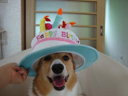 誕生日ハット杏2