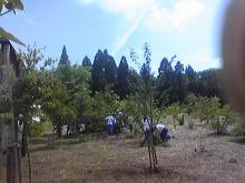 DVC00021_20120720100336.jpg