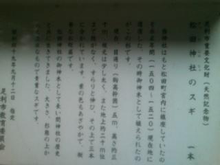 matsuda1206248.jpg