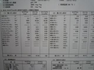 P1130352.jpg