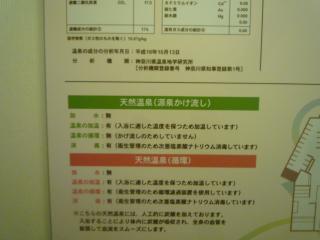 P1130390.jpg