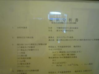 P1130832.jpg