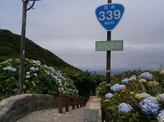 P8040163.jpg
