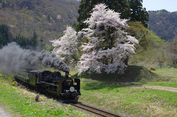120428nozawa-onobori8226C57.jpg