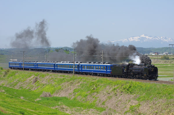 120520hiraizumi-maesawaD514.jpg