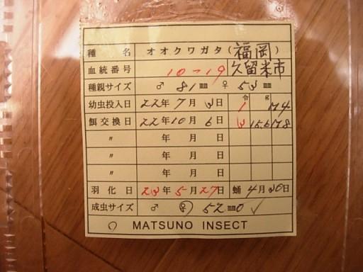 DSCN9739.JPG