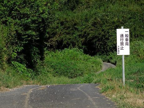 DSCN599712.jpg