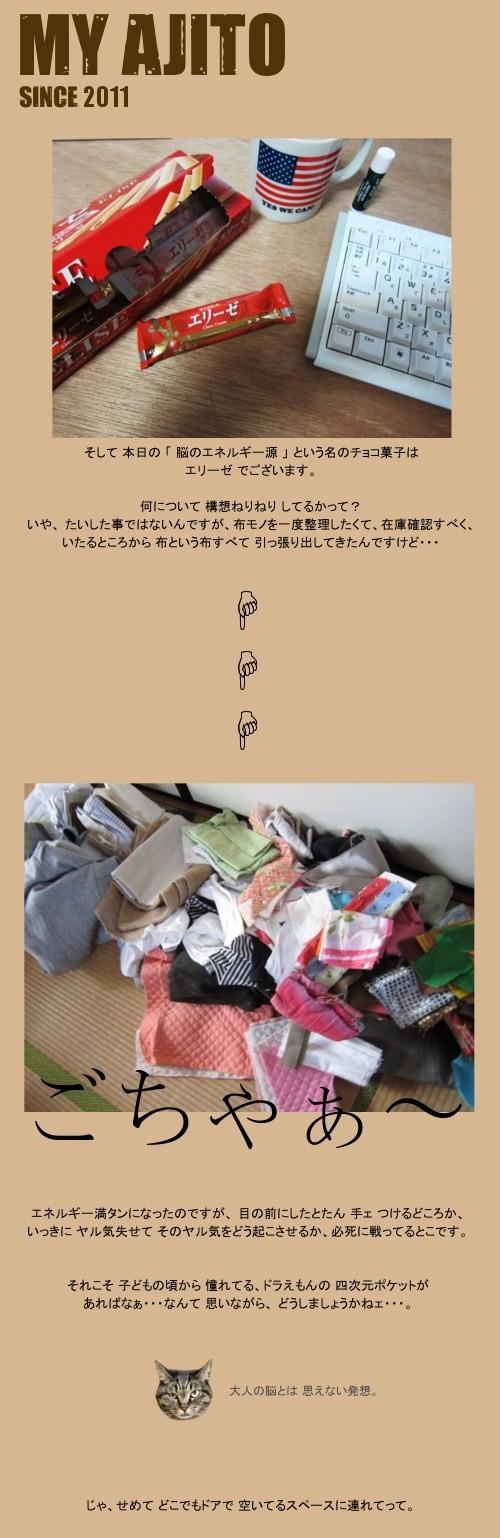 bi_tyo_4.jpg