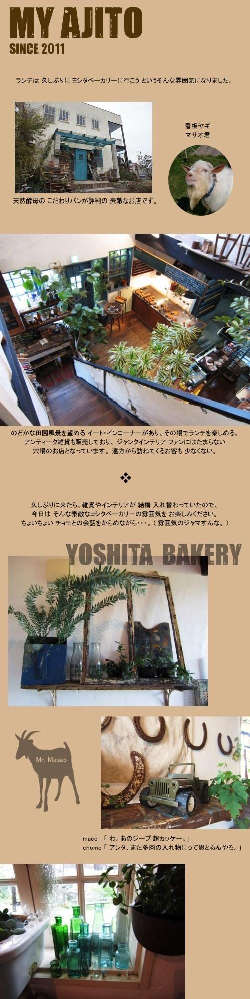 chomo_yoshita_3.jpg