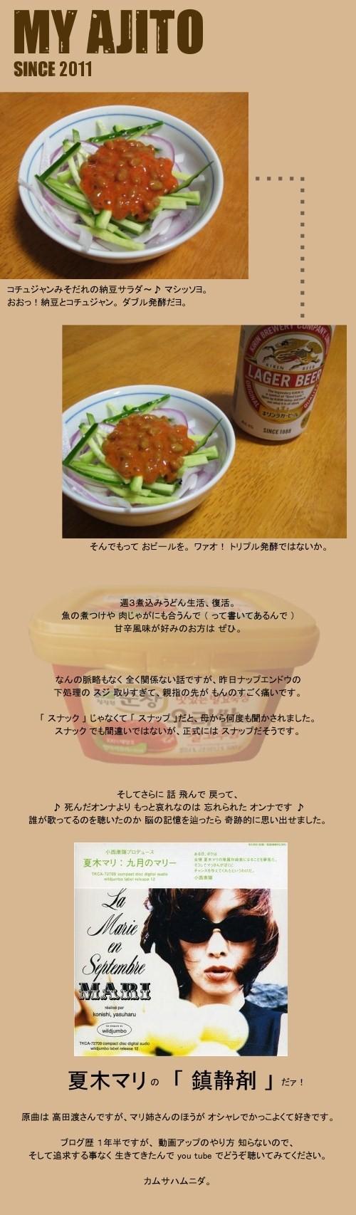 hakkou_4.jpg