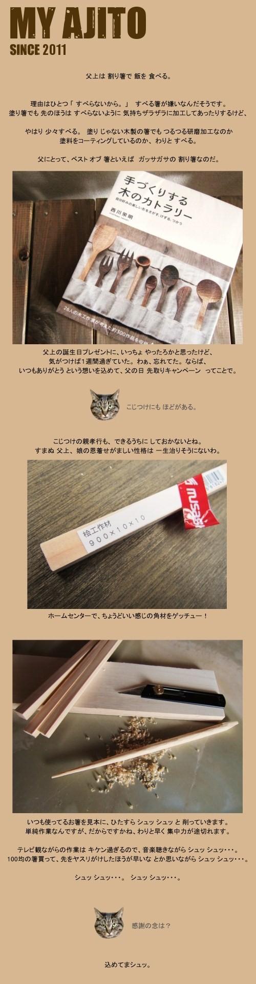 hashi_01.jpg