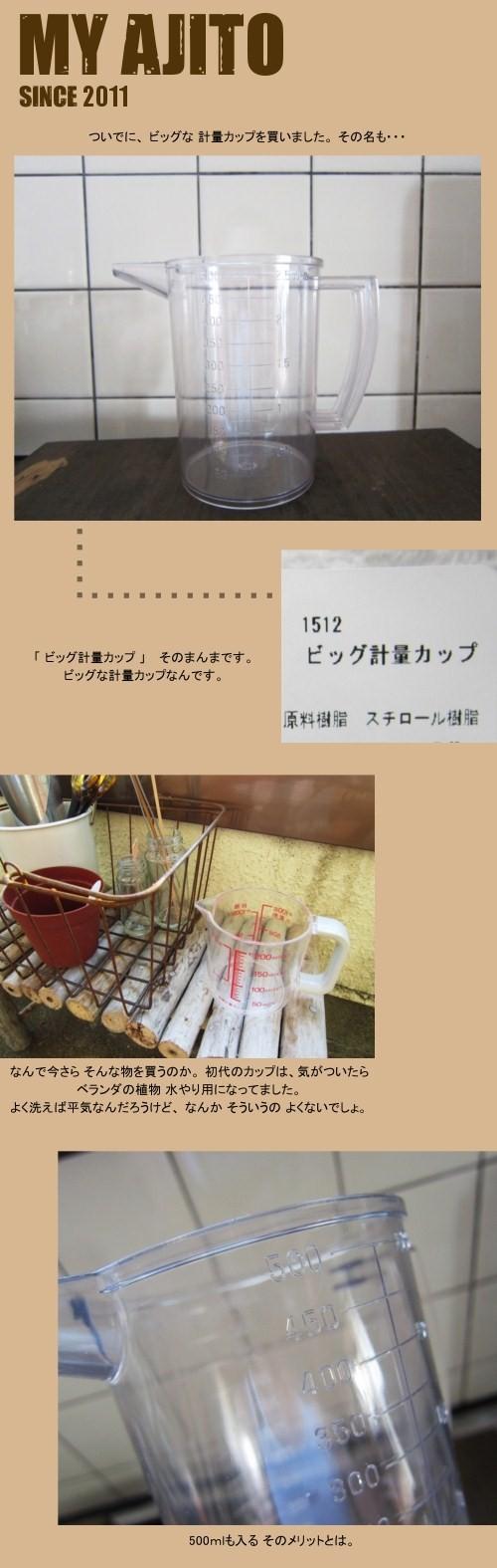 hya_n_02JPG.jpg