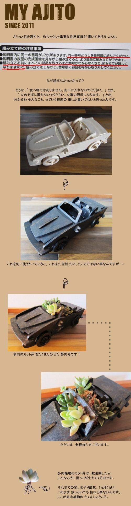 icar_04.jpg
