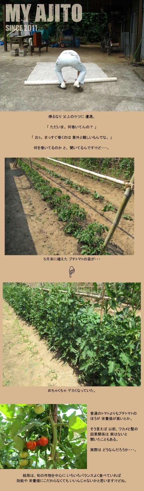 jikka_i_02.jpg