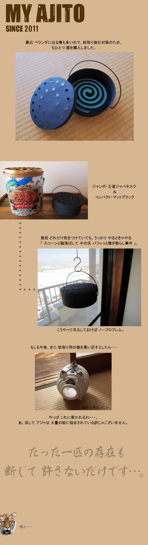 natsu_item_2.jpg