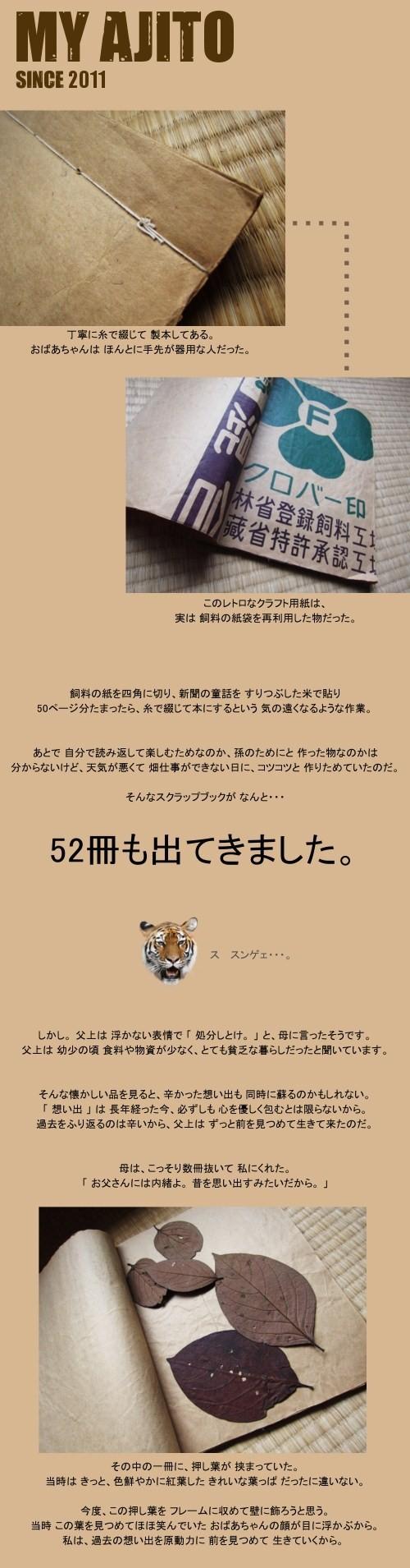 oshiba_05.jpg