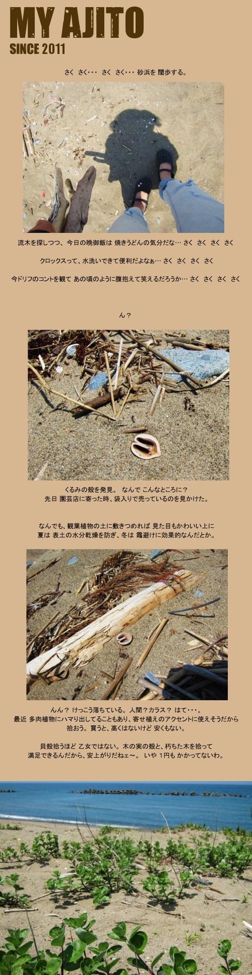 ryubo_3.jpg