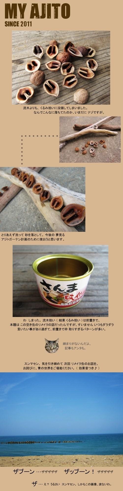 ryubo_4.jpg