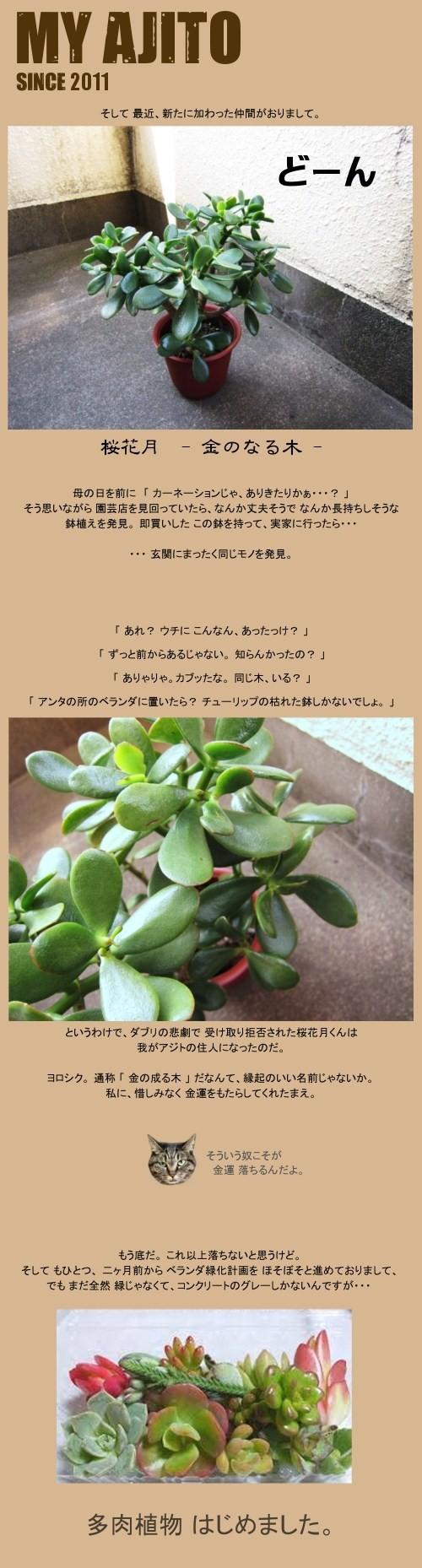 taniku_2.jpg