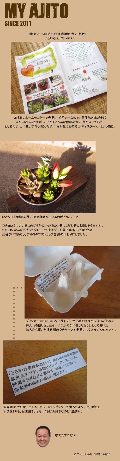 taniku_3.jpg