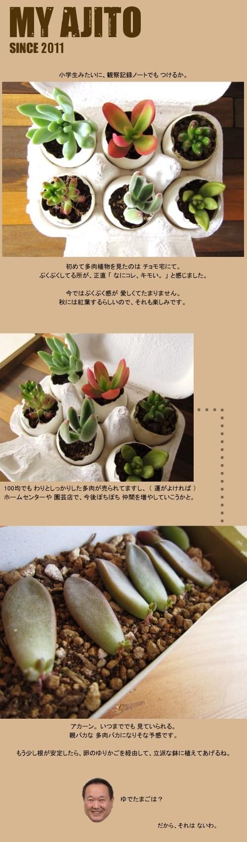 taniku_5.jpg