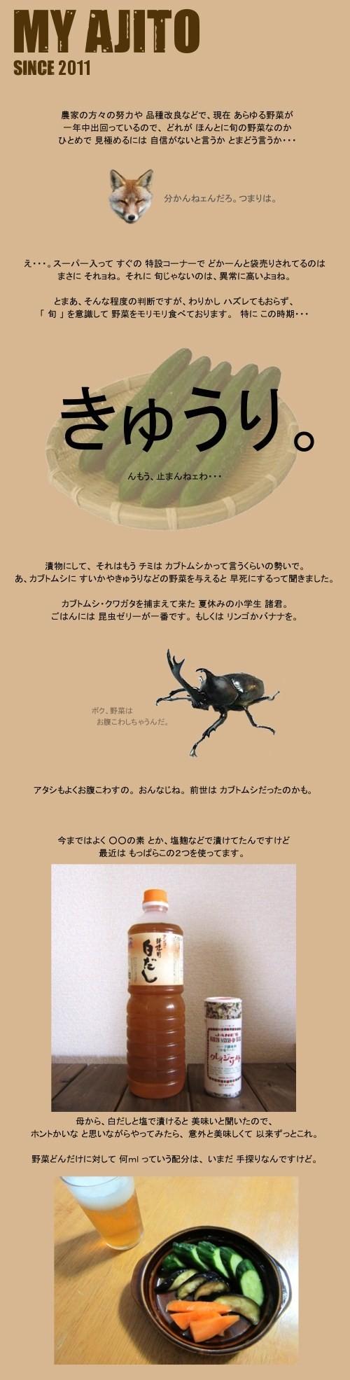tsuke_01.jpg