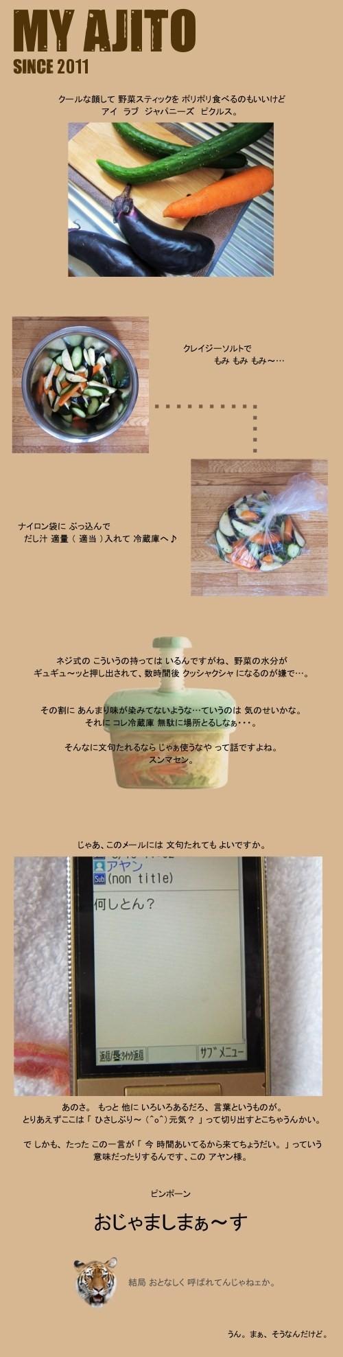 tsuke_02.jpg